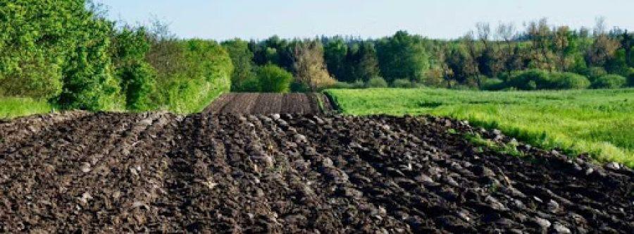 Скасування безоплатної приватизації землі є дієвим запобіжником корупційних схем у галузі земельних відносин – аналітичний огляд НАЗК